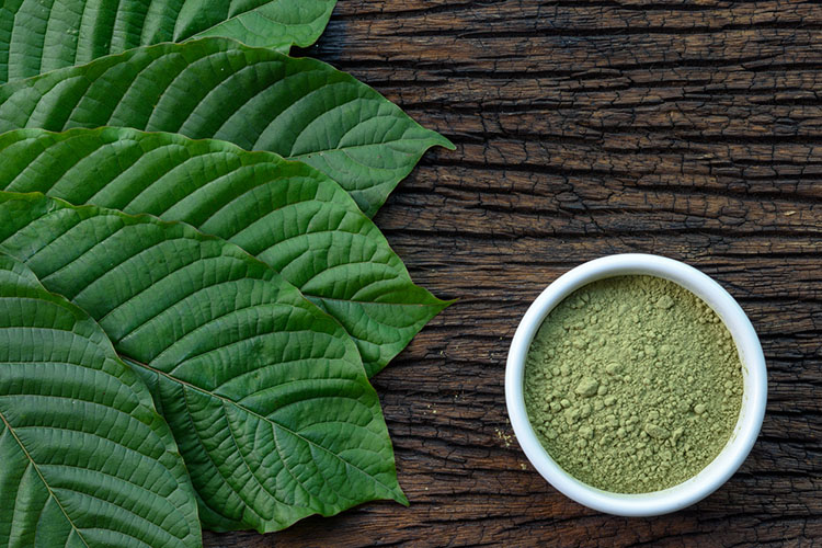 Cease Slimming Time And Begin Greatest Kratom